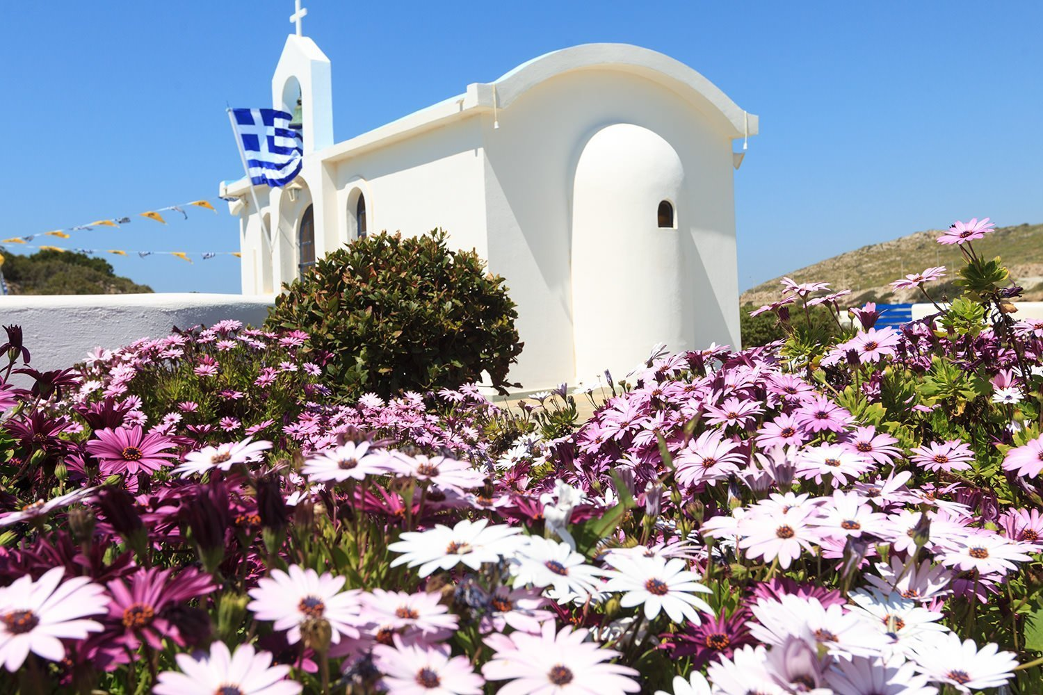 Full Day Athens Tour - Spring flowers